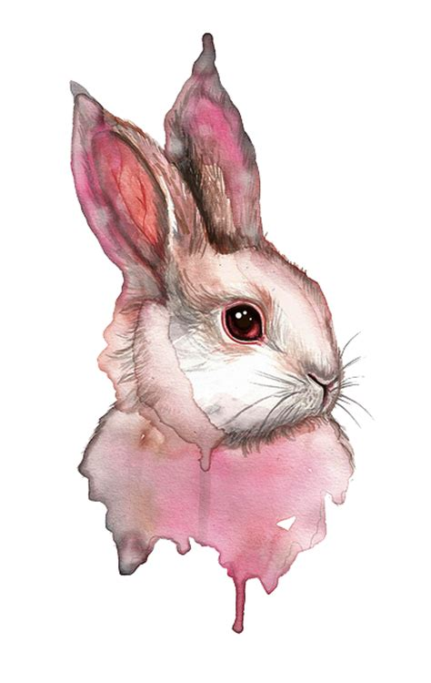 sleepy bunny the bunny who loved lavender books watercolor drip