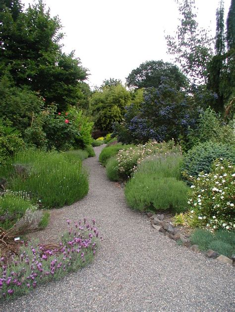 landscaping pathways 105 best images about landscape ideas on pinterest