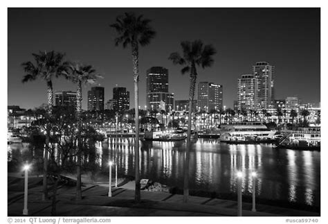 black and white picture photo skyline at harbor at night