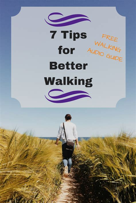 7 Tips On Teaching Your To Walk On A Leash by How To Walk 7 Tips For Better Walking Gillispie