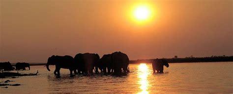 ten interesting facts  botswana travelingeast