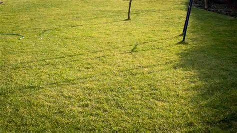 Wie Schnell Wächst Rasen Am Tag by Rasen Umgraben Rasen Umgraben Biorhythmuskalender Rasen