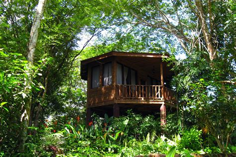 tree house layout at belize treehouses belize tree houses tree house belize blog judy s jungle journal