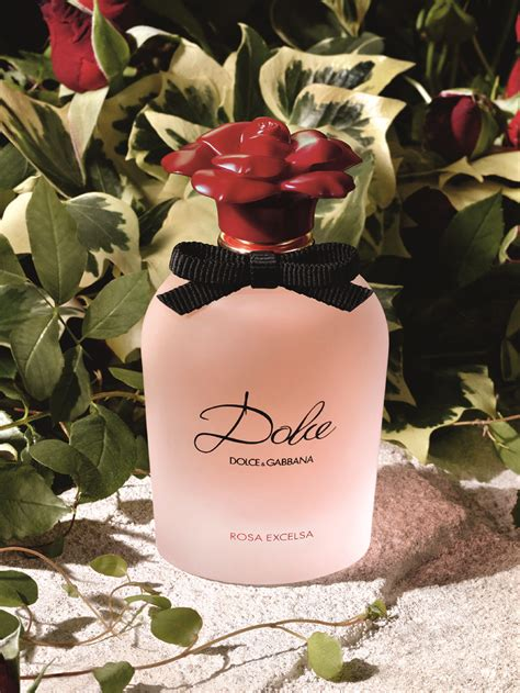 Dolce Gabbana Perfume 2016 Latest Rosa Excelsa Rose Feminine Womens | dolce gabbana perfume 2016 latest rosa excelsa rose