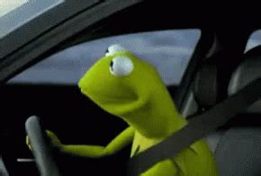 Kermit The Frog Meme Driving - driving like gif driving kermit frog gifs say more