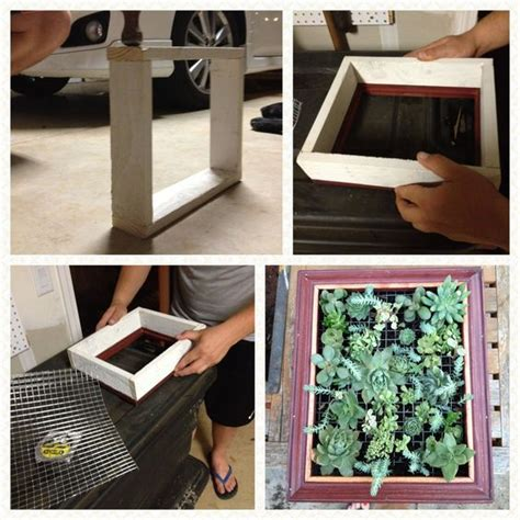 Succulent Frame My Farmscape - hanging succulent picture frame my quot pinspiration