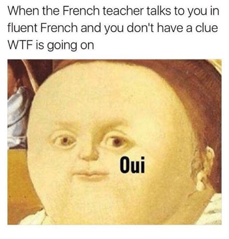 Meme In French - funny fluent memes of 2017 on sizzle wtf is going on