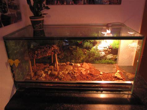 terrarium beleuchtung einbauen terrarium mit beleuchtung ma 223 e breite tiefe h 246 he mit