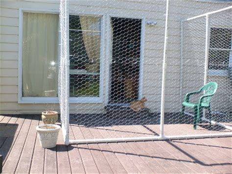 ls made from pvc pipe the best cats the of our quot catio quot outdoor