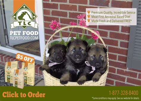 tlc puppy food tlc premium health whole food for dogs puppies hillview kennels