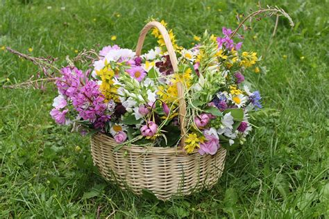 imagine fiori free photo bouquet flowers basket gift free image on