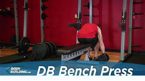 bench press max workout dumbbell bench press chest exercise bodybuilding com