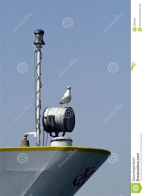 the open boat seagull seagull on stern of ship royalty free stock image image