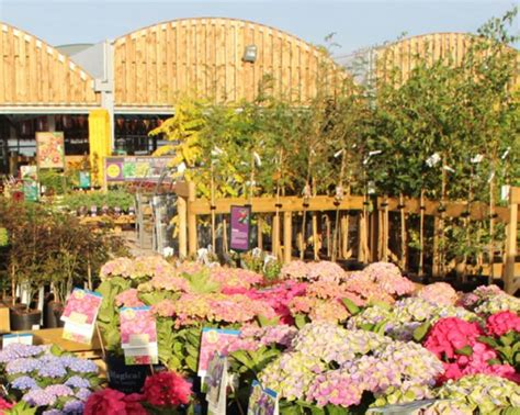 northallerton garden centre  north west yorkshire