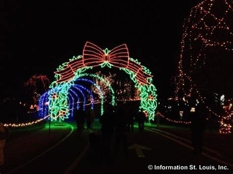 winter wonderland walk holiday lights display at tilles park