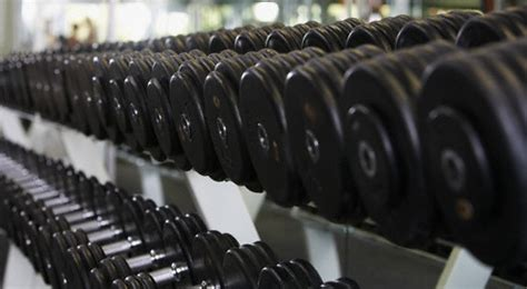 Dumbell Fitness basic equipment for building i am survivordean