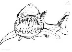 sharks coloring pages free draw sharks coloring pages