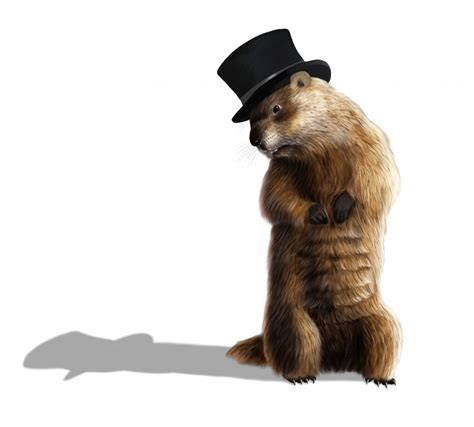 groundhog day accuracy what phil s prediction on groundhog day means for your