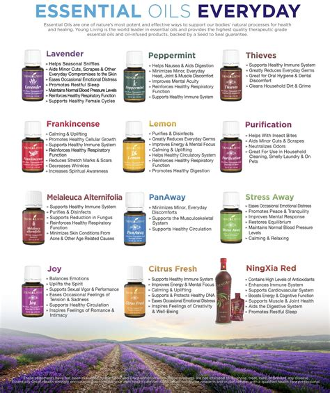 essential oils for everyday household using the best beginners guide book with 50 useful non toxic and time saving home made essential oils recipes essential oils book books essential oils holistic health herbalist