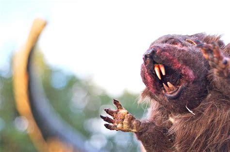 groundhog day killer killer groundhog flickr photo