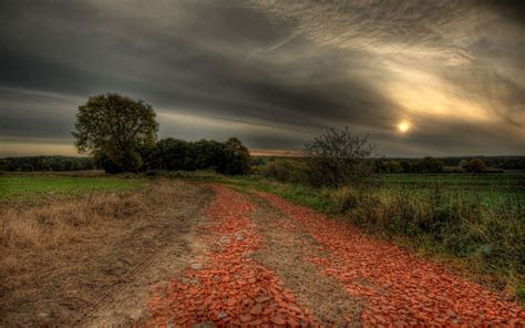 country road fields trees dusk wallpapers country road