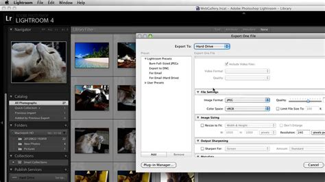 raw format to jpg converter how to convert raw to jpeg in lightroom youtube