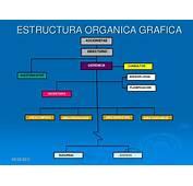 La Organizacion En Las Empresas