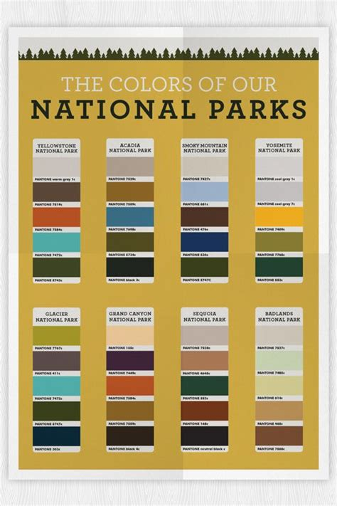 color nation 1000 images about inspiration color on