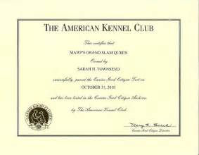 service dog certificate template gallery for gt service dog certificate template service dog certificate template