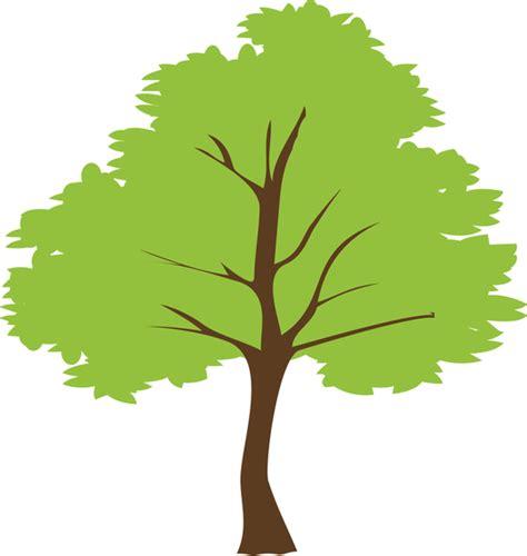 clipart vectors tree vector vector