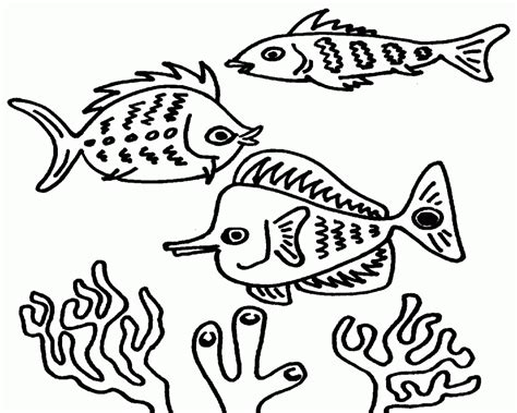 free coloring pages of coral fish