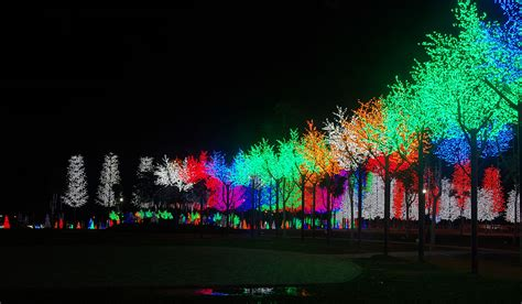 Artistic Lighting File I City Park At Night Jpg