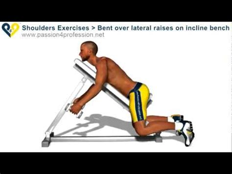 bent over lateral raises on incline bench bent over lateral raises on incline bench youtube youtube