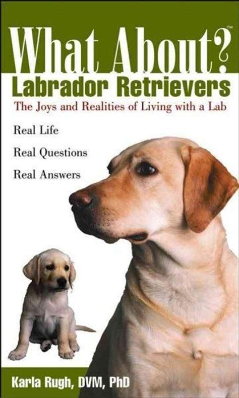 how much do lab puppies cost what about labrador retrievers paperback the o jays retriever puppies and puppys