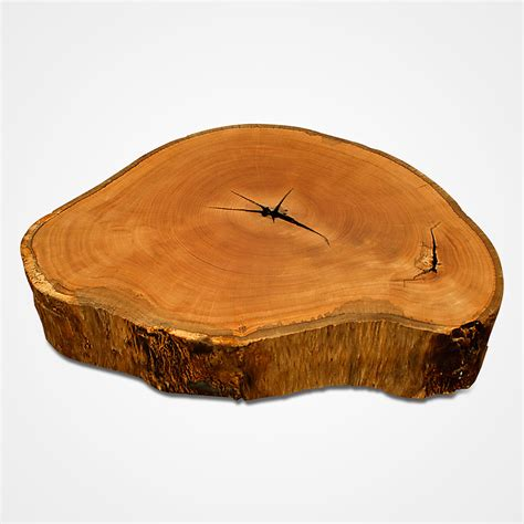 Pequi Wood Slice Coffee Table Rotsen Furniture Wood Slice Coffee Table