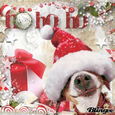 Merry My Deer merry my dear friend picture 135595968