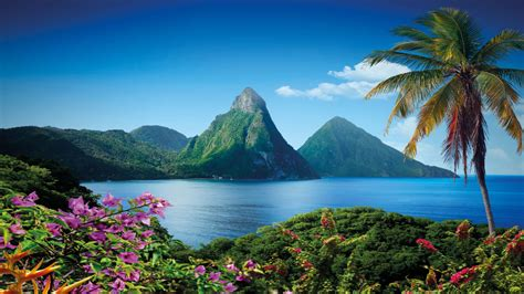 St Lucia Hd Wallpaper gros piton mountain in lucia caribbean island