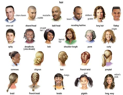 types of hair for types of faces db teaching wiki describe a person