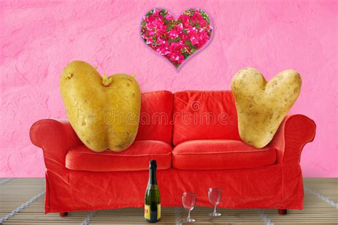 download couch potato two valentine couch potatoes stock photos image 36919613