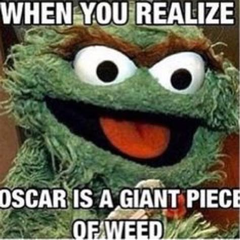 Funny Memes About Weed - best 25 weed buds ideas on pinterest weed types weed