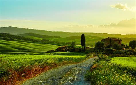 italy tuscany beautiful landscape fields road grass