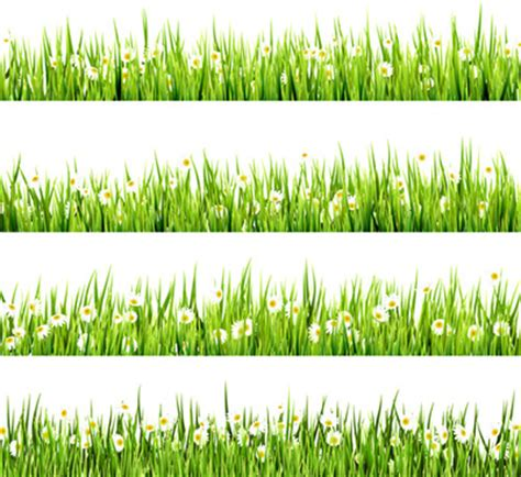 gras pattern ai grass border free vector download 6 420 free vector for