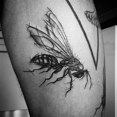 wasp tattoo best 25 wasp ideas on antique prints