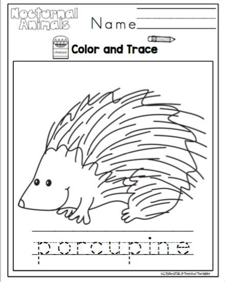 printable nocturnal animal book nocturnal animals printable redone preschool printables