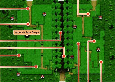 pokemon y route 6 ruta 6 kalos wikidex fandom powered by wikia