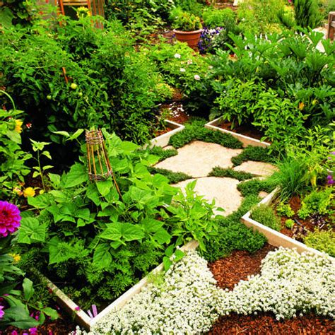 backyard vegetable garden design vegetable garden designs felmiatika