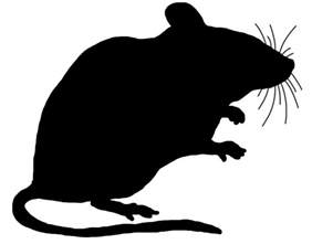 The 3 Blind Mice Mouse Clip Art