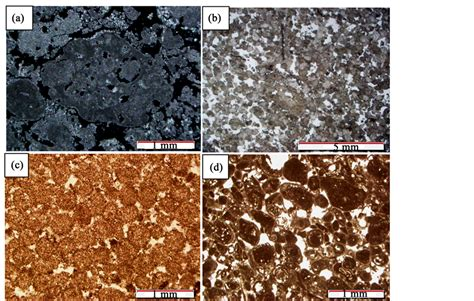 ooids thin section porosity and rock typing in hydrocarbon reservoirs case