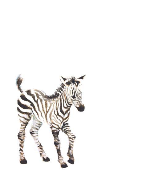 baby zebra watercolor print animal painting safari animal
