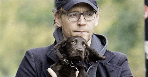 tom hiddleston puppy tom hiddleston holding a puppy is the best thing you ll see today metro news